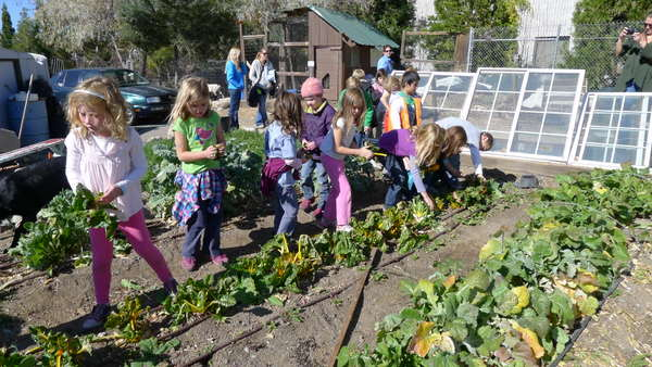 1st graders at the River School